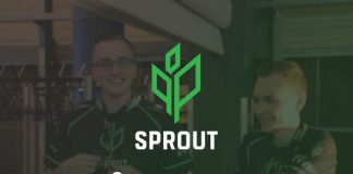 Sprout paysafecard