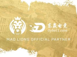 MAD Lions DYVIP