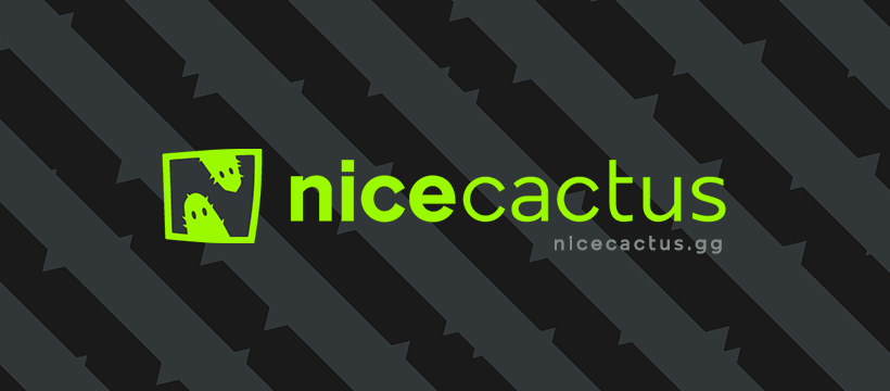 75226488 2591389797589060 7220466312412135424 n - Nicecactus: Connecting with an audience of digital natives