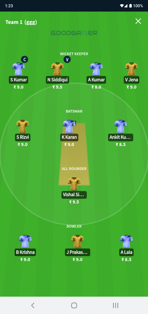 GoodGamer fantasy cricket