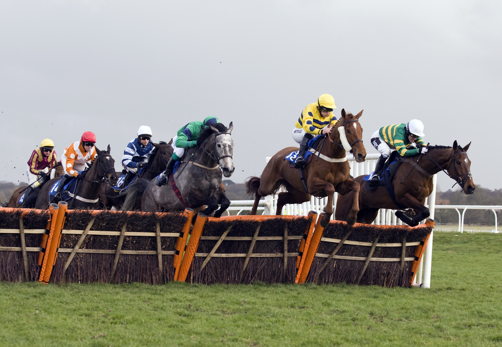 Football fans fight at newbury races betting binary options review brokers of expertise