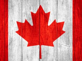 HeadsUp Entertainment International Inc has announced its strategic plan to enter the regulated sports betting market in Canada.