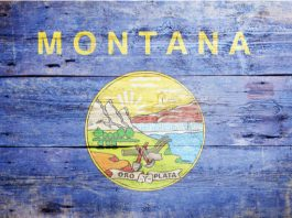 Simplebet has launched its fully automated real money 'Micro-Market' betting offering in Montana via its partnership with Intralot Inc.