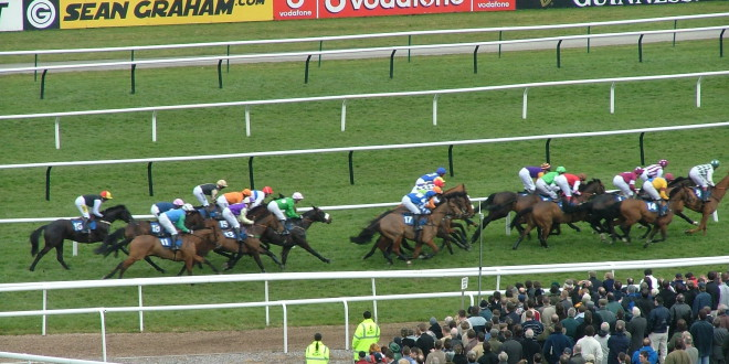 Horse Racing Live Betting