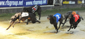 Arena Racing strengthens Greyhound position acquiring Newcastle & Sunderland properties from William Hill