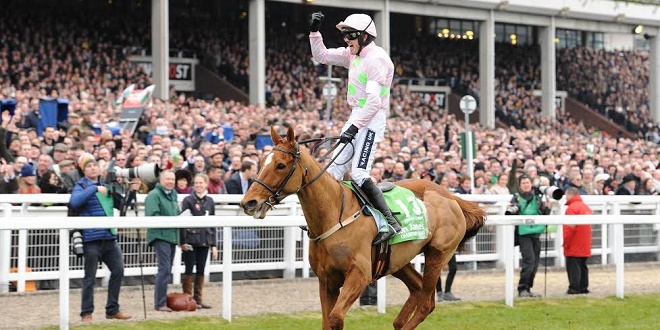 "Hereford - Cheltenham Racecourse 15.03.16 The Stan James Champion Hurdle Challenge Trophy. Ruby Walsh celebrates after winning the race riding Annie Power. Photo Andy Watts / Racingfotos.com THIS IMAGE IS SOURCED FROM AND MUST BE BYLINED ""RACINGFOTOS.COM"""