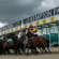 The Jockey Club submits plans for Kempton Park sell-off