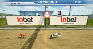 InBet Games - 3D Dogs