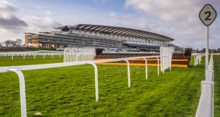 Royal Ascot 'massive' seven-race cards welcomed by bookmakers