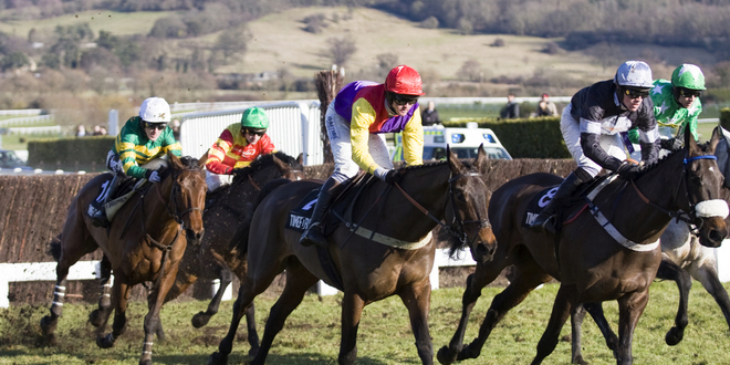 Spotlight Sports Group ramps up Cheltenham excitement with Coral mini-series