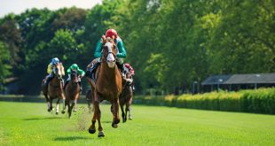 SIS signs Watch and Bet racing deal with Sky Bet