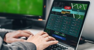 Oren Cohen Shwartz: Betting on player experience to bring a higher margin