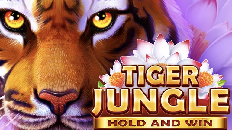 Slot developer Booongo has enhanced its catalogue of Hold and Win titles with the launch of its latest game, Tiger Jungle.